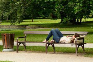 bench-890045__480