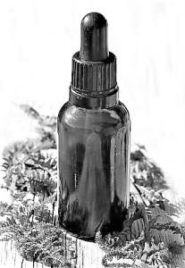 essential-oils-2385072__480