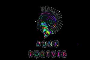 punk-892286__480