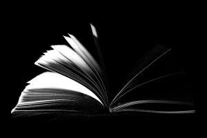 book-933280__480 (1)